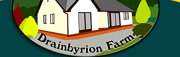 Drainbyrion Farm Self Catering Holiday Bungalow Mid Wales